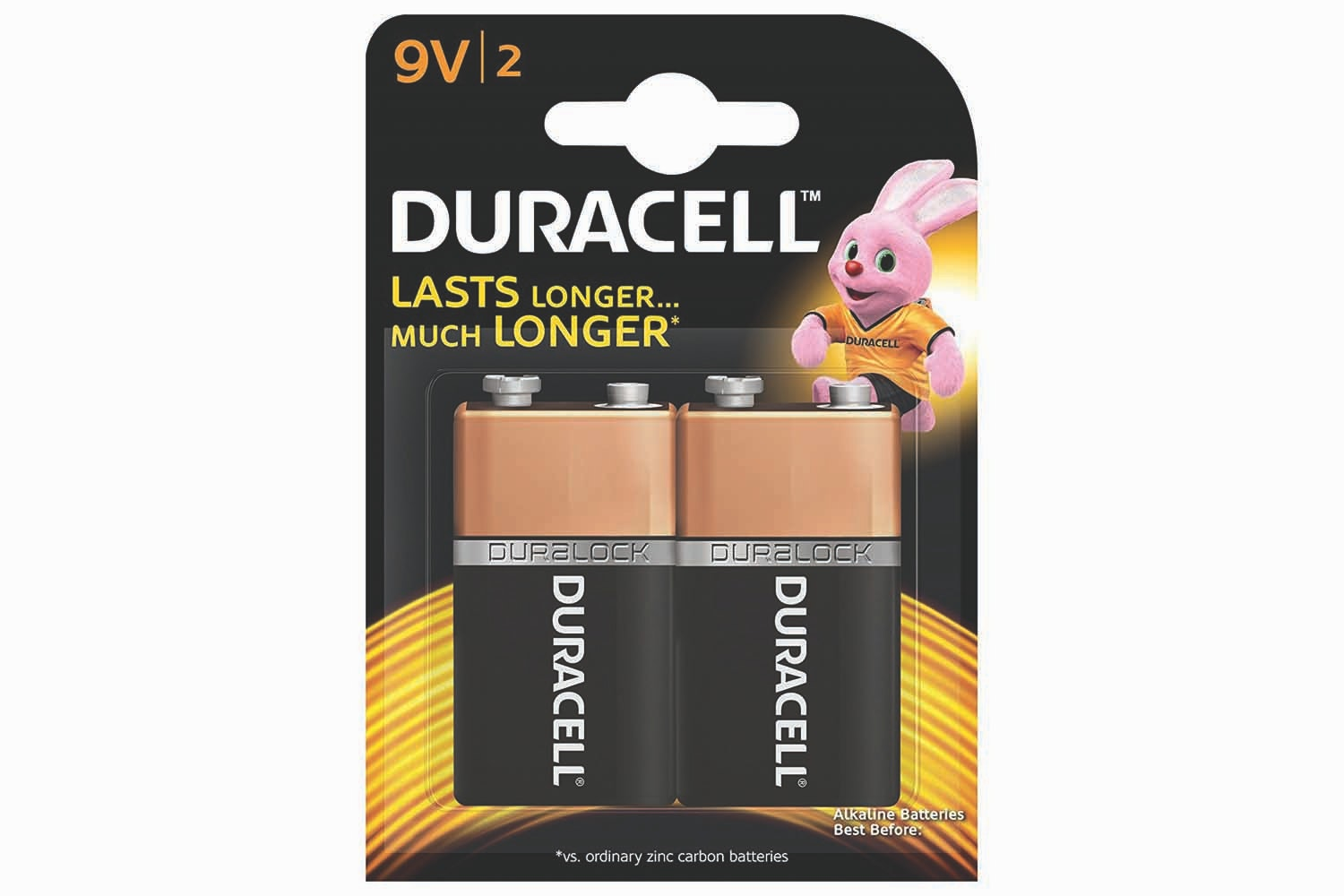 Duracell Alkaline 9V Battery | 2 Pack