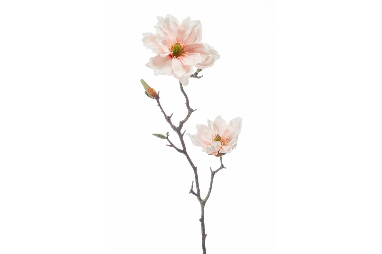 Magnolia Spray | Light Pink