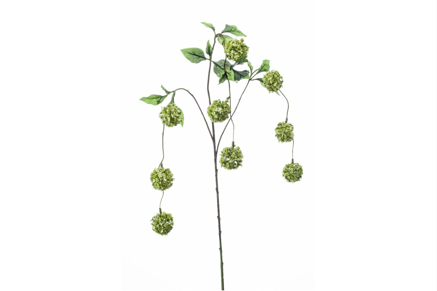 Viburnum Hanging Spray | Green