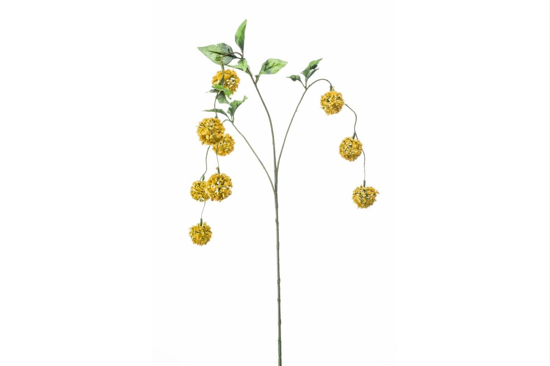 Viburnum Hanging Spray   Yellow