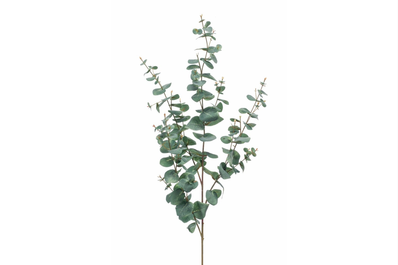 Eucalyptus Spray   115cm