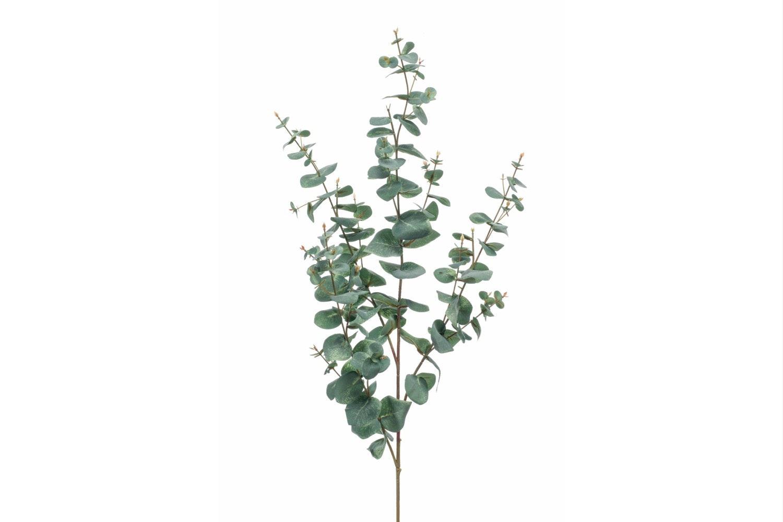 Eucalyptus Spray | 115cm