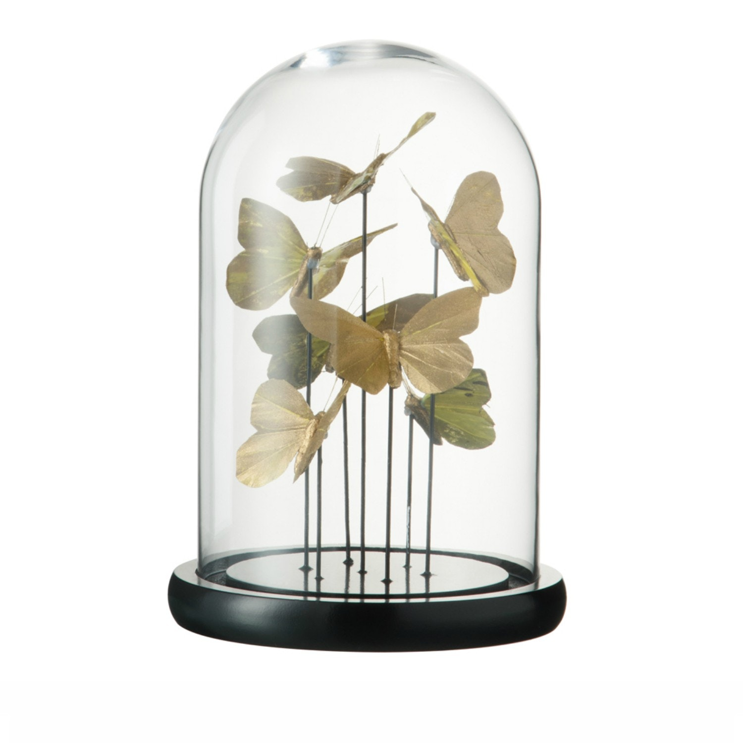 Bell Jar Butterfly   Large   Gold