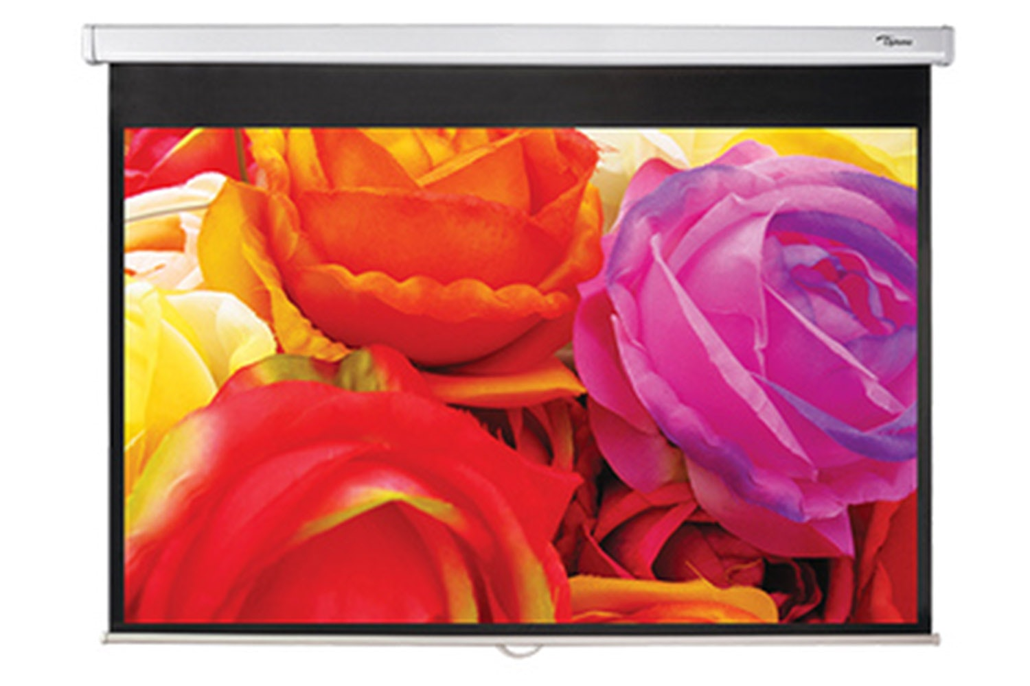 OPTOMA 95 INCH 16-10 SCREEN