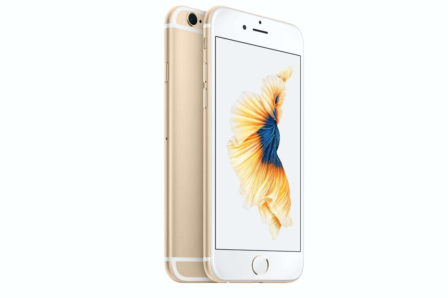 Mint+ Premium iPhone 6S | 16GB | Gold