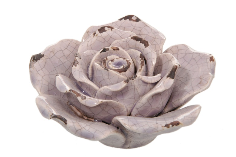 Decorative Rose, Old Pink