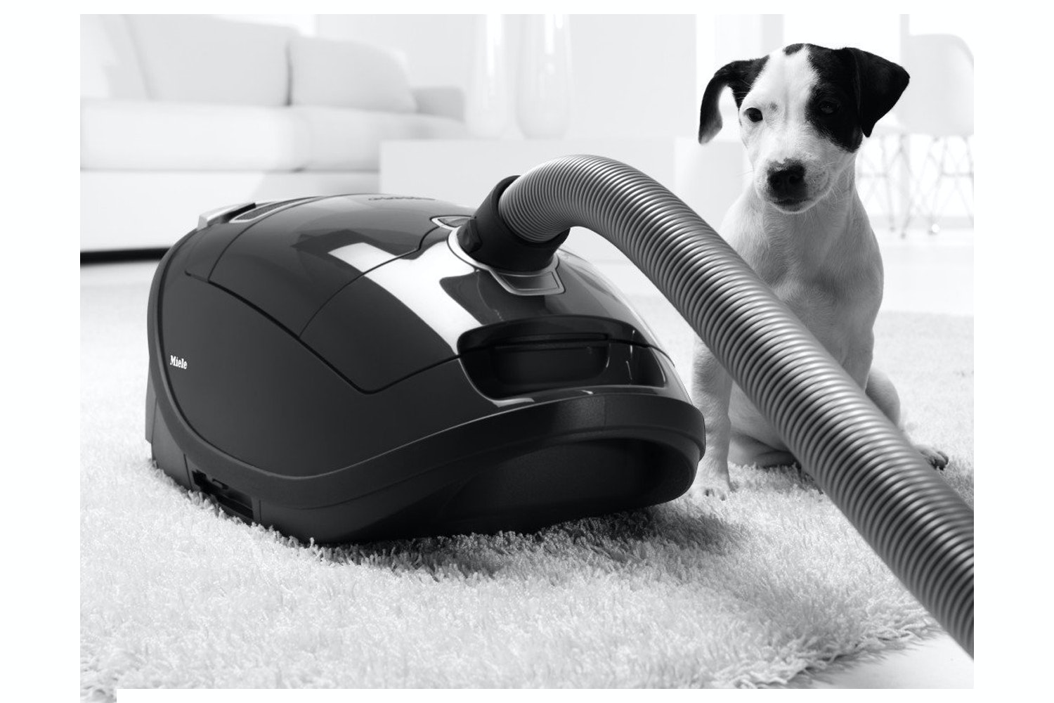 Miele Complete C3 Extreme PowerLine Vacuum Cleaner | SGDC1