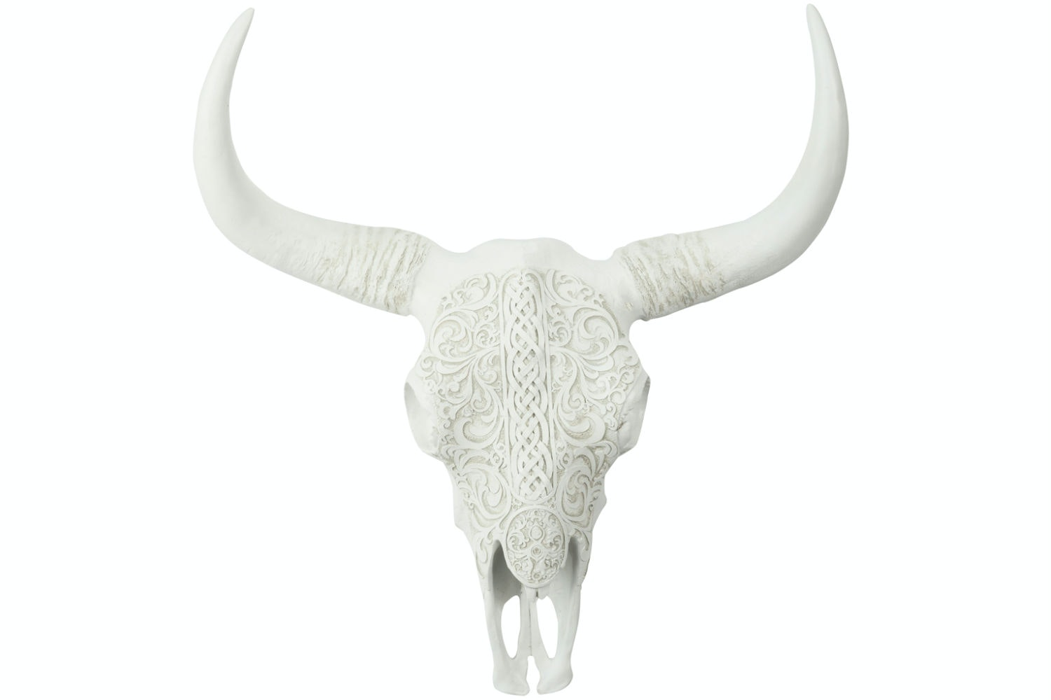 Carved Skull in Poly White | Large