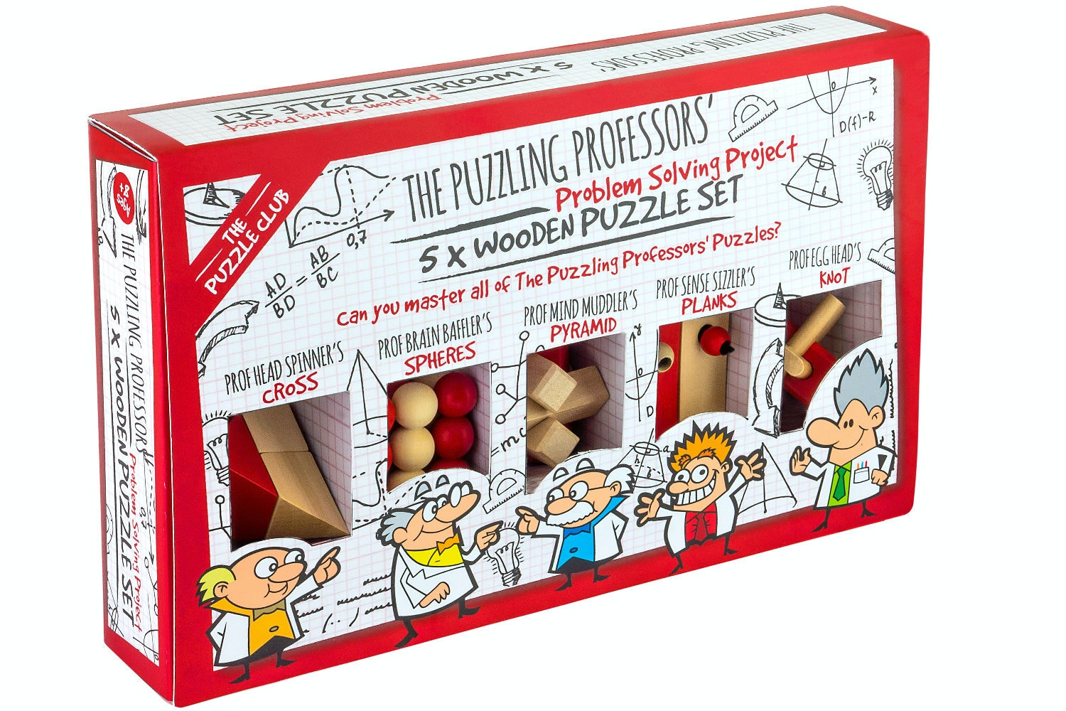 Puzzling Prof 5 Wooden Puzzles