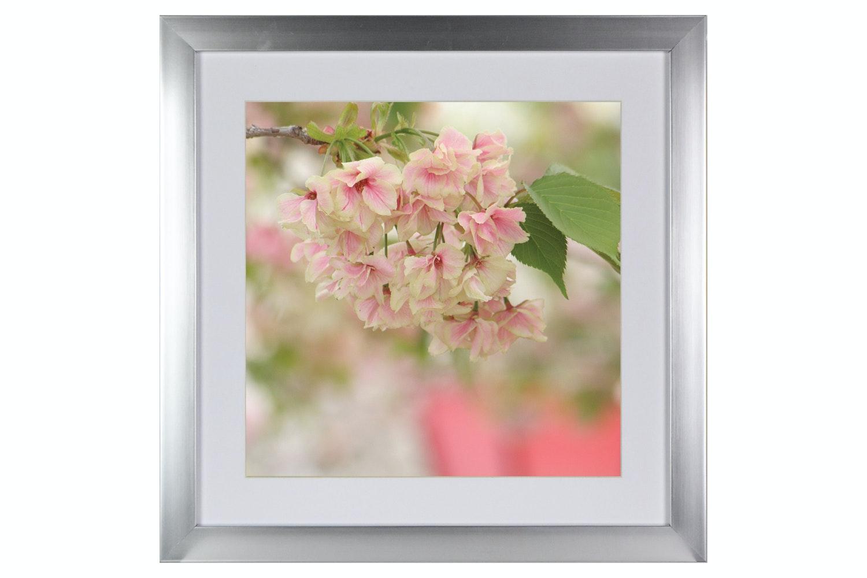 Blossom Ii. Printed Art | 50x50cm
