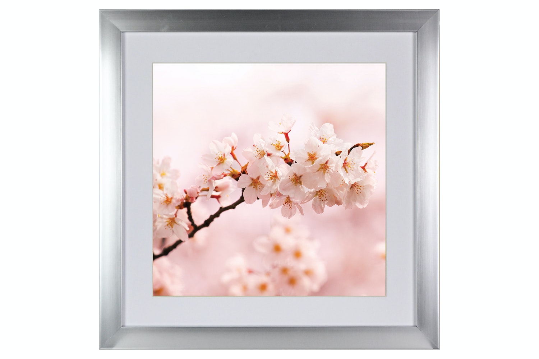 Blossom Iii. Printed Art | 50x50cm