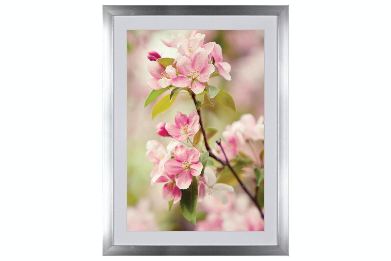 Blossom Iv. Printed Art | 60x80cm