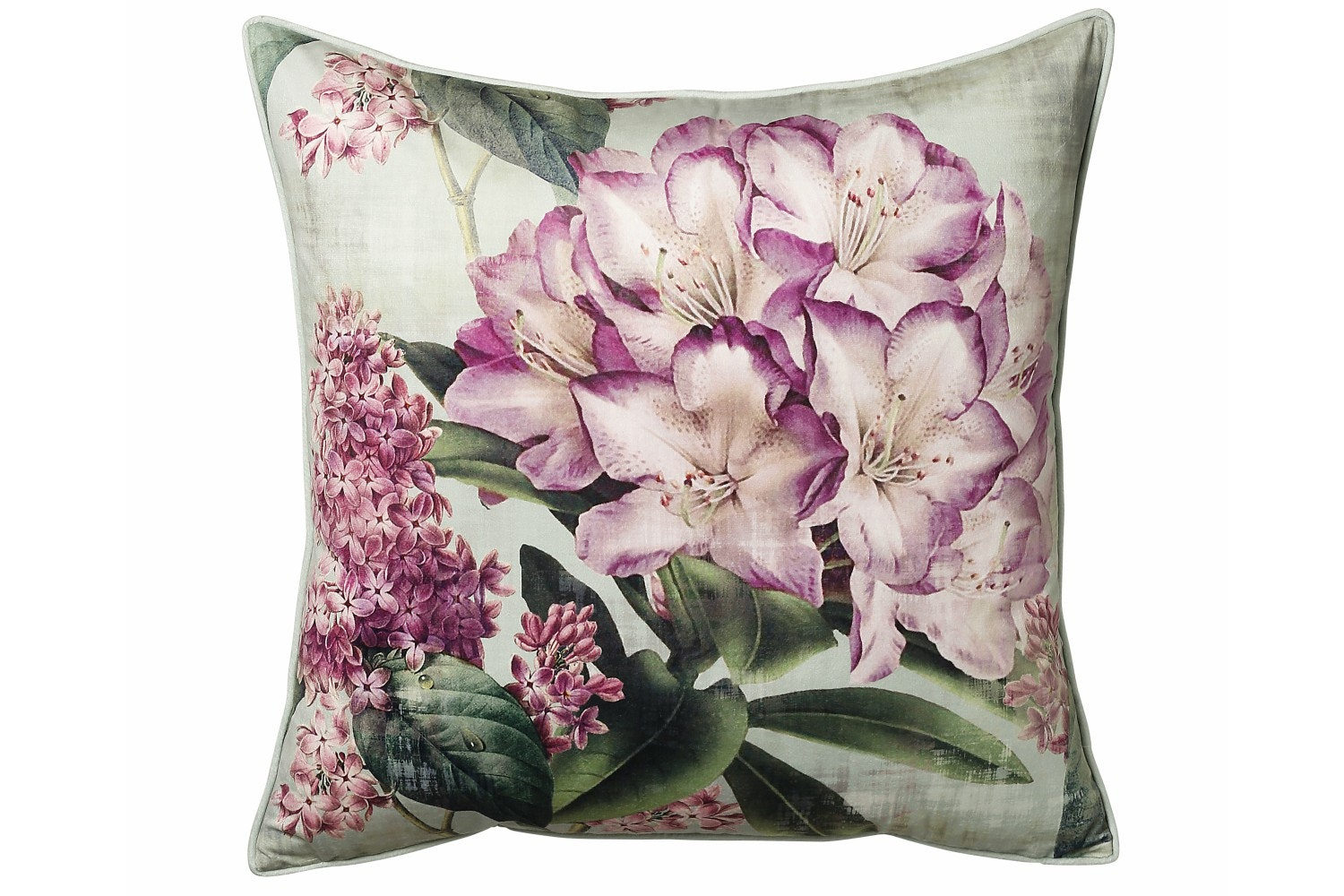 Scatter Box Botanical Cushion | 58x58 | Sage