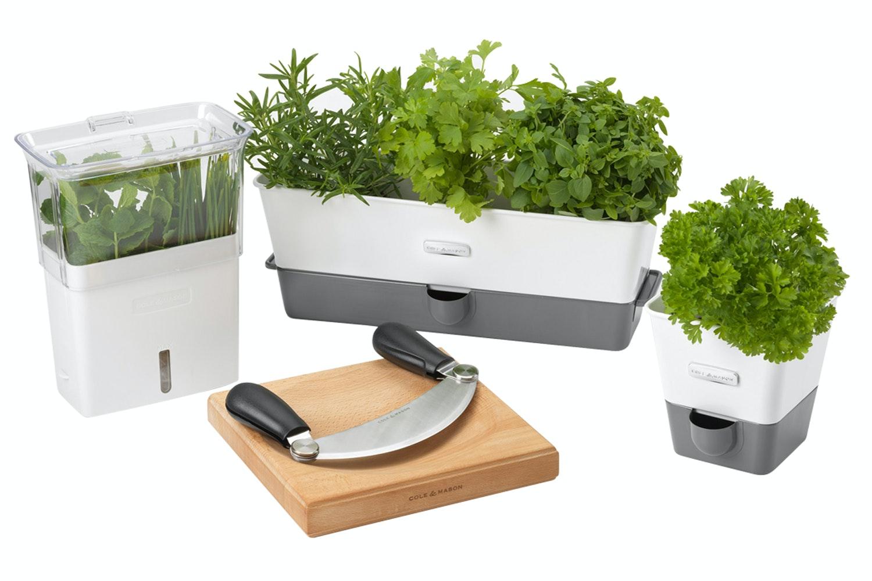 Cut Herb Keeper