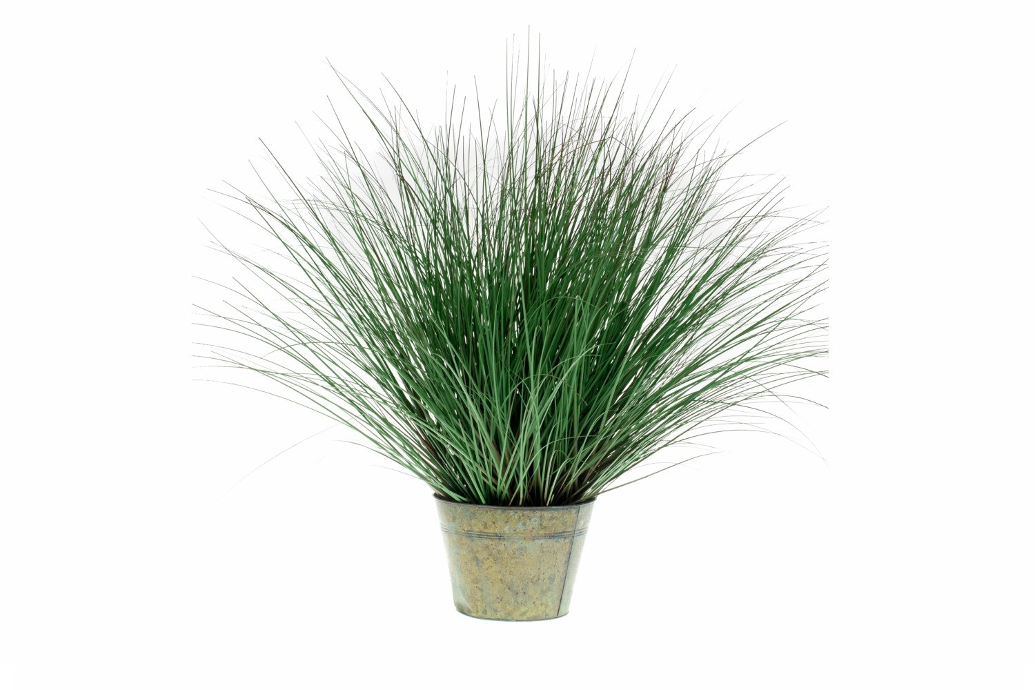Wild Grass In Zinc Pot | 95cm