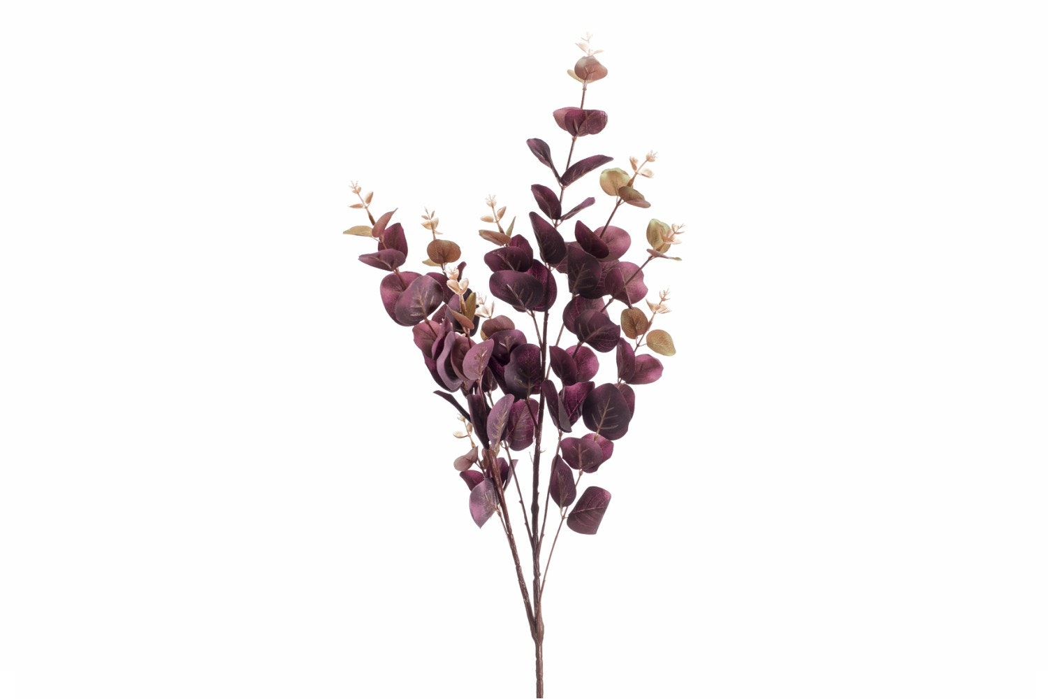 Eucalyptus Spray | Burgundy