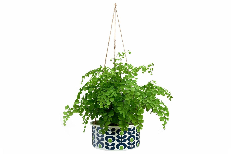 Orla Kiely  - Hanging Pot | Large