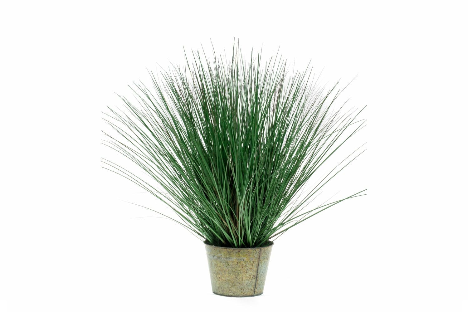 Wild Grass In Zinc Pot | 80cm