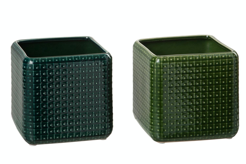 Green Square Pot
