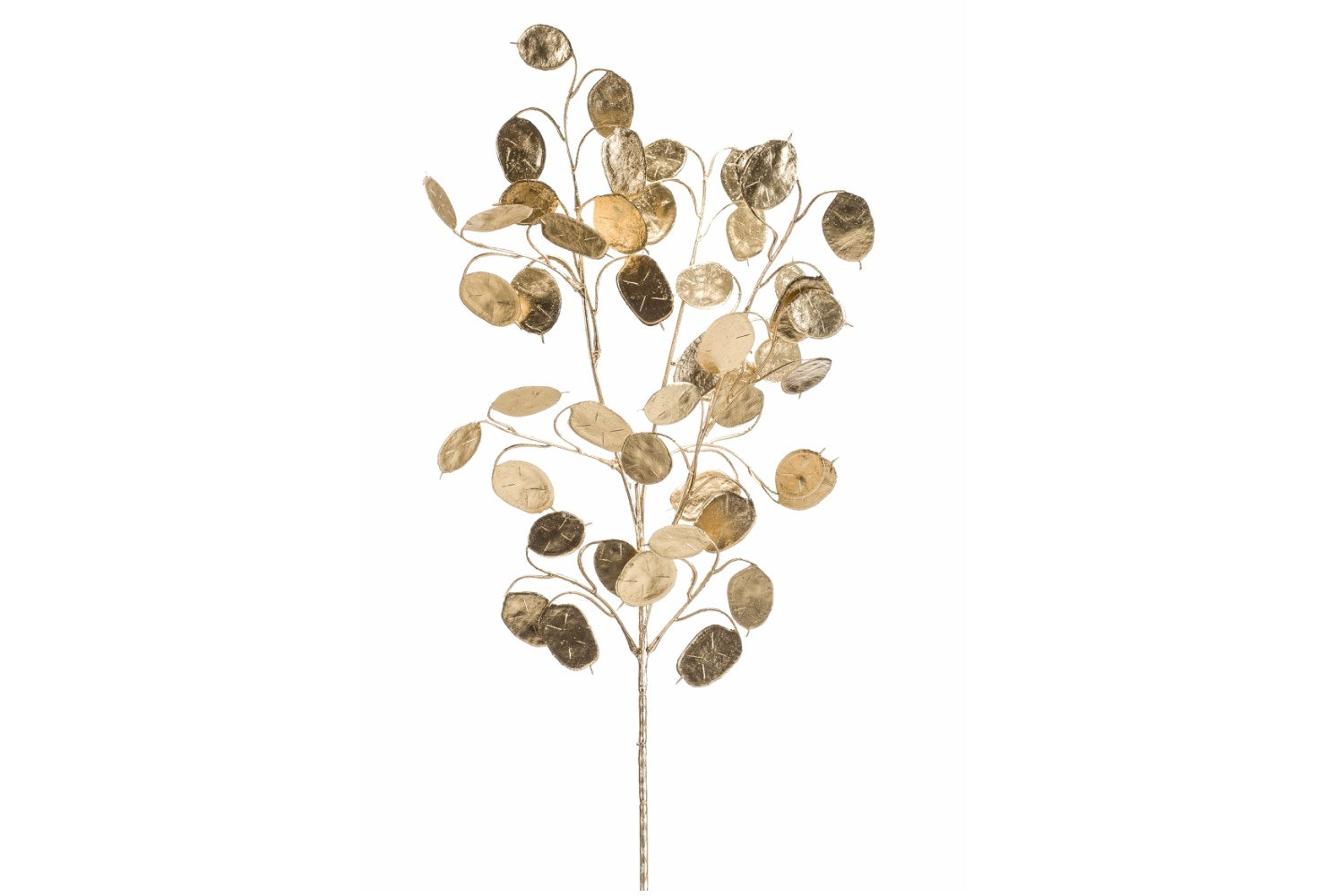 Lunaria Spray | Gold